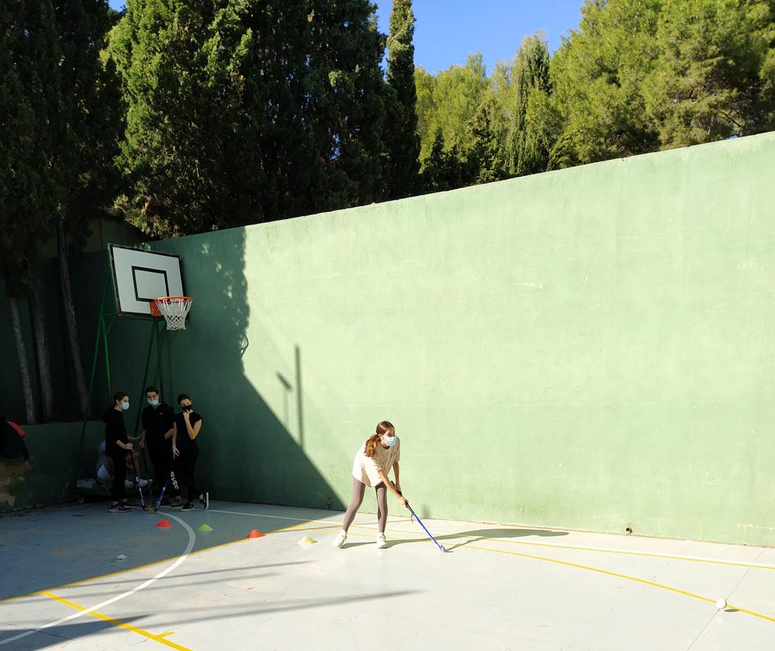 proyecto educativo promotor de la actividad fisica y el deporte